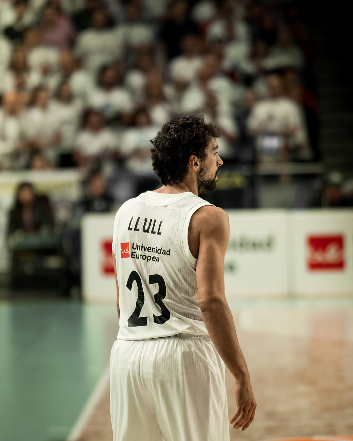 Real Madrid VS Baskonia - Llull